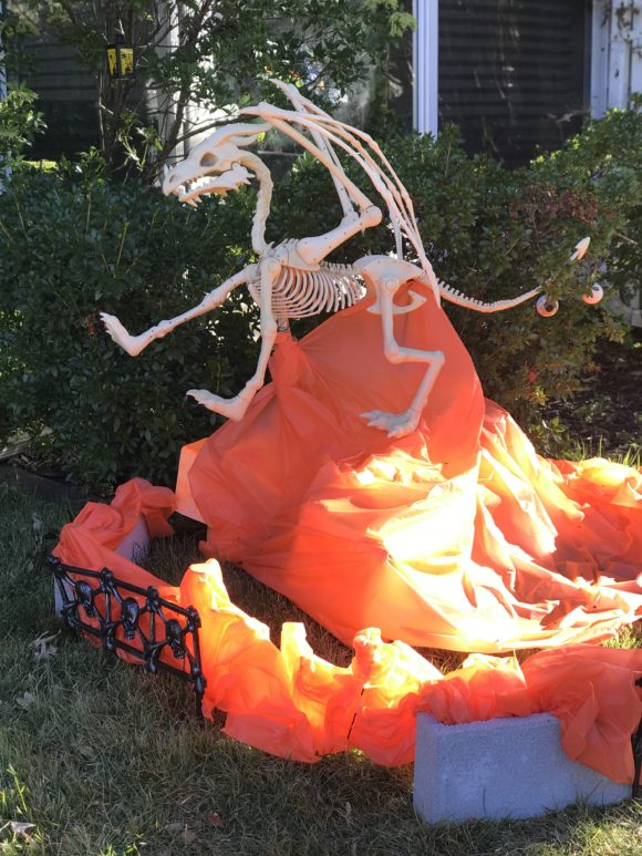 A dragon skeleton rests in a dragon lair as part of one family's outdoor Halloween decor.