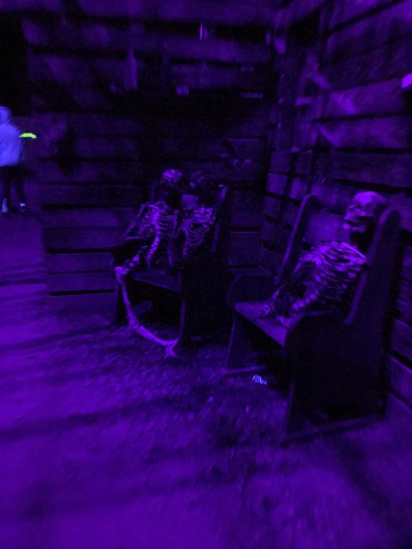 Inside the wicked woods a haunted maze at Six Flags Great Adventure
