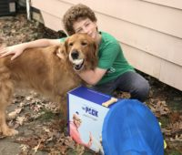 a boy and his golden retriever pose with The Pack, a dog reality show