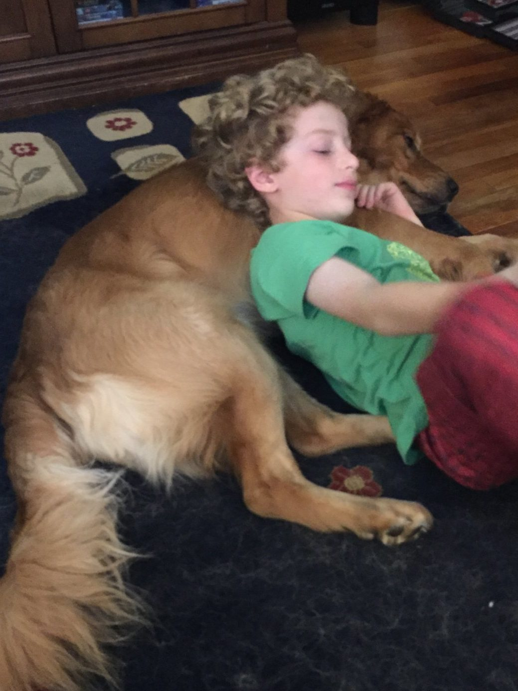a little boy lays on his golden retriever