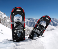 snowshoes in red stuck in snow with mountains