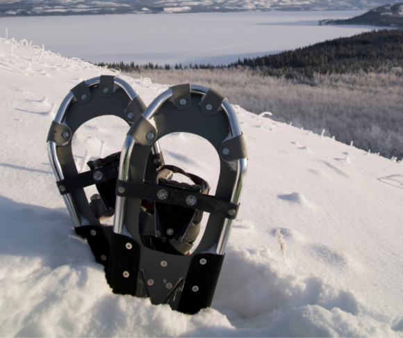 a pair of olive green snowshoes stuck in the snow