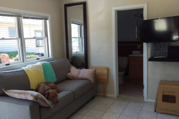 WildWoof Beach Bungalow living room