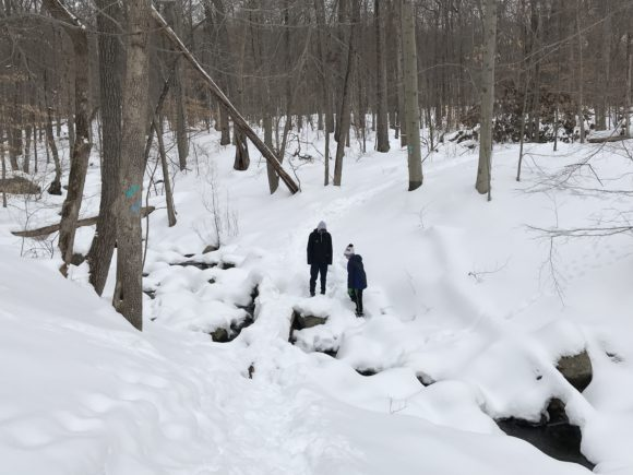Boys looking over the stream from Chikahoki Falls at Norvin Green State Forest
