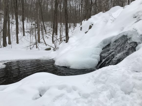 Horizontal picture of NJ hiking trail that leads to Chikahoki Falls at Norvin Green State Forest