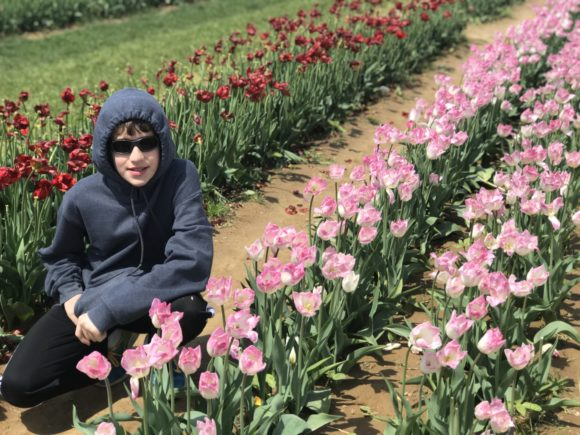 teen with tulips at tulip festival in NJ
