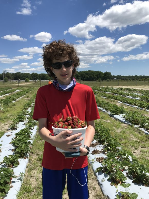Teen with a bucket of pick your own strawberries at Sahls father son farm in Galloway.