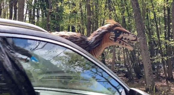 A car drives thru to see dinosaurs in NJ at Six Flags Great Adventure