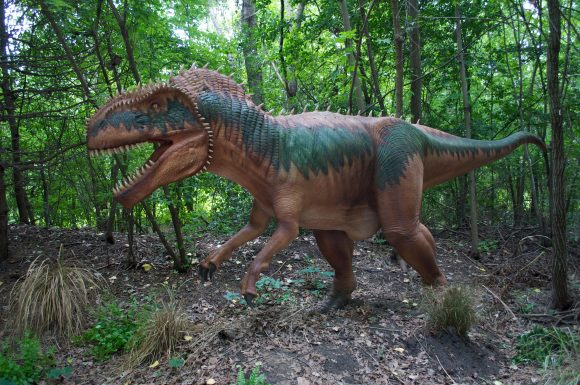 Xpedition Dino Dinosaurs at six flags great adventure Megalosaurus
