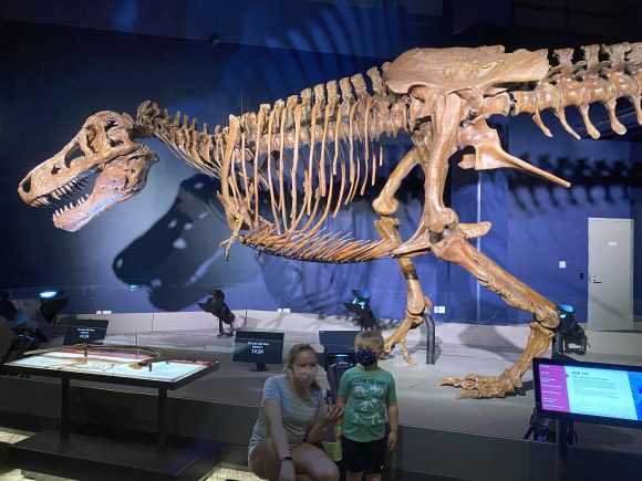 Toddlers and preschoolers enjoy the new dinosaur exhibit at the Liberty Science Center.
