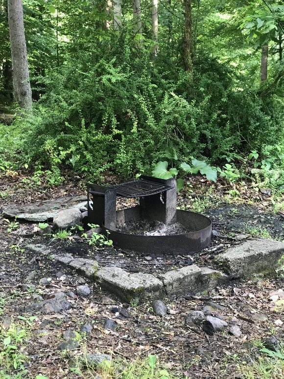 Campsites at Stokes State Forest include a fire ring