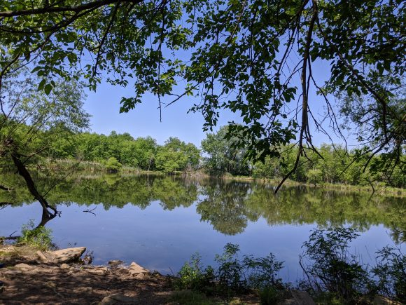 view of Rancocas Creek from Amico Island hiking trails in Riverside, NJ