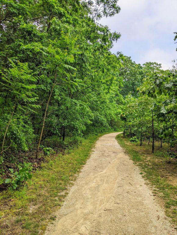 hiking trails near Rancocas Creek at Boundary Creek Park in Moorestown NJ
