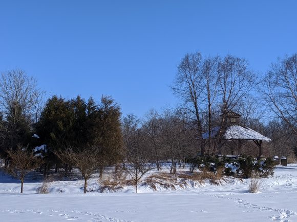 snow on the ground at Boundary Creek Park in Moorestown NJ