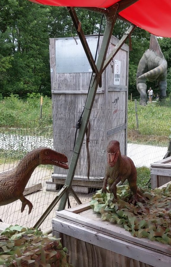 Preschoolers really enjoy the small Compsognathus dinosaurs at Field Station Dinosaurs.