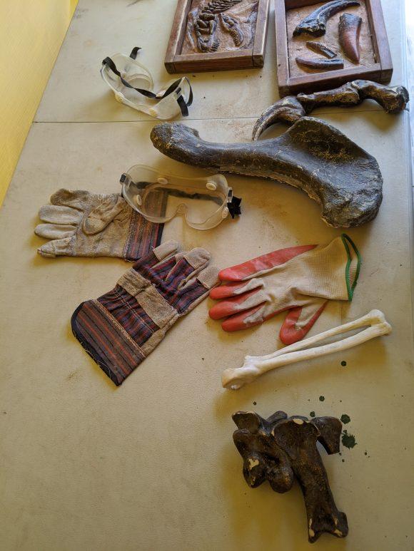 Paleo Lab at Field Station Dinosaurs