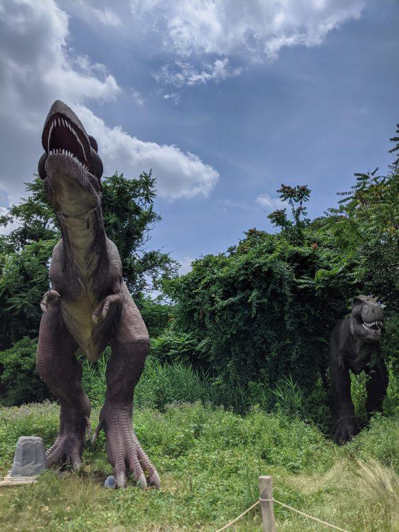 Trex at Field Station Dinosaurs