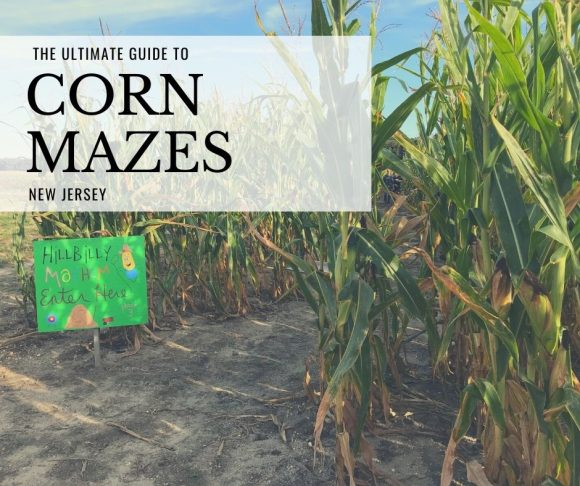 New Jersey corn mazes are some of the wonderful fall things to do in New jersey with kids